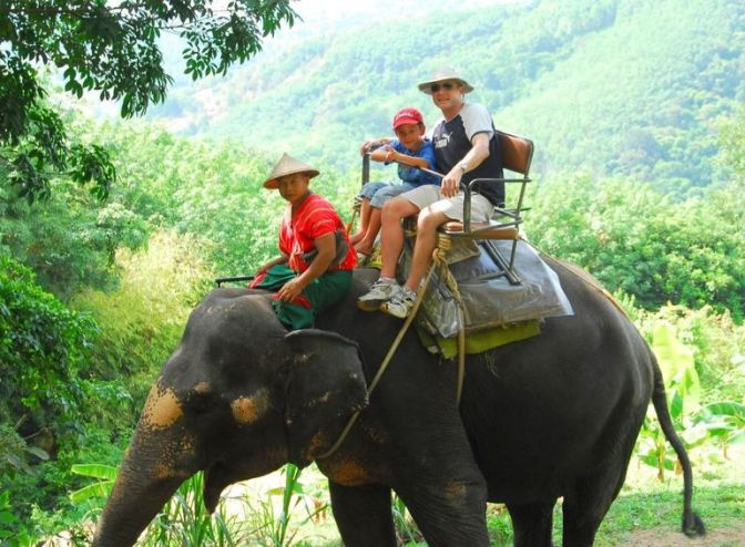 phuket-elephant-safari-photo_989927-770tall